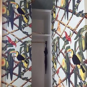 papugi na ścianie